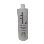 Zen Hair Escova Progressiva Passo Único 1L