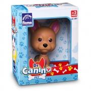 Doutor Canino - Pet
