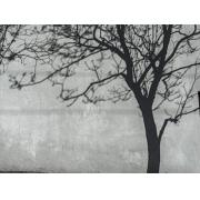 Tela em Canvas CIV