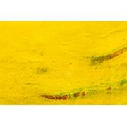 Tela em Canvas XXV