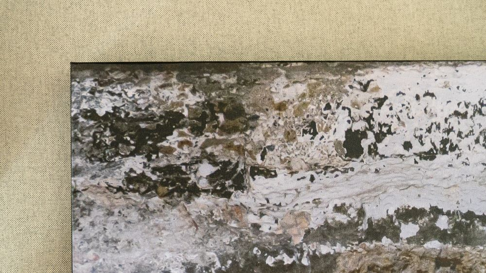 Tela em Canvas CLIX  - Abarca Móveis Ltda