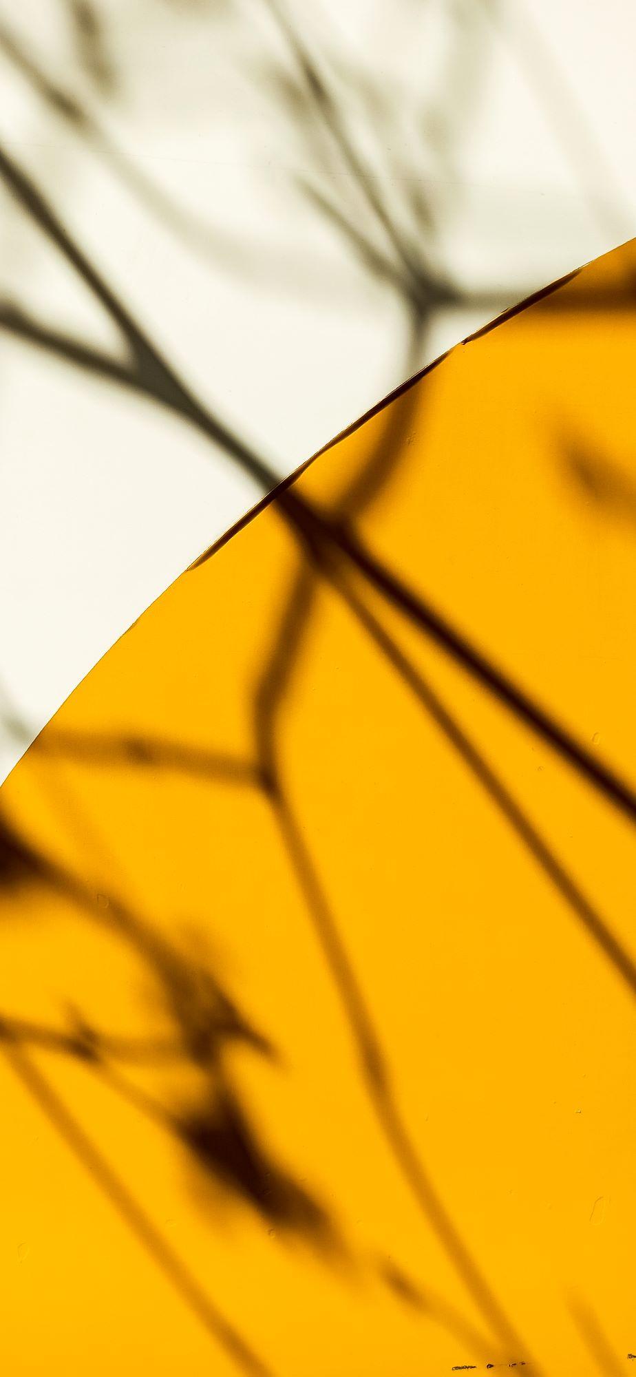 Tela em Canvas CVII  - Abarca Móveis Ltda