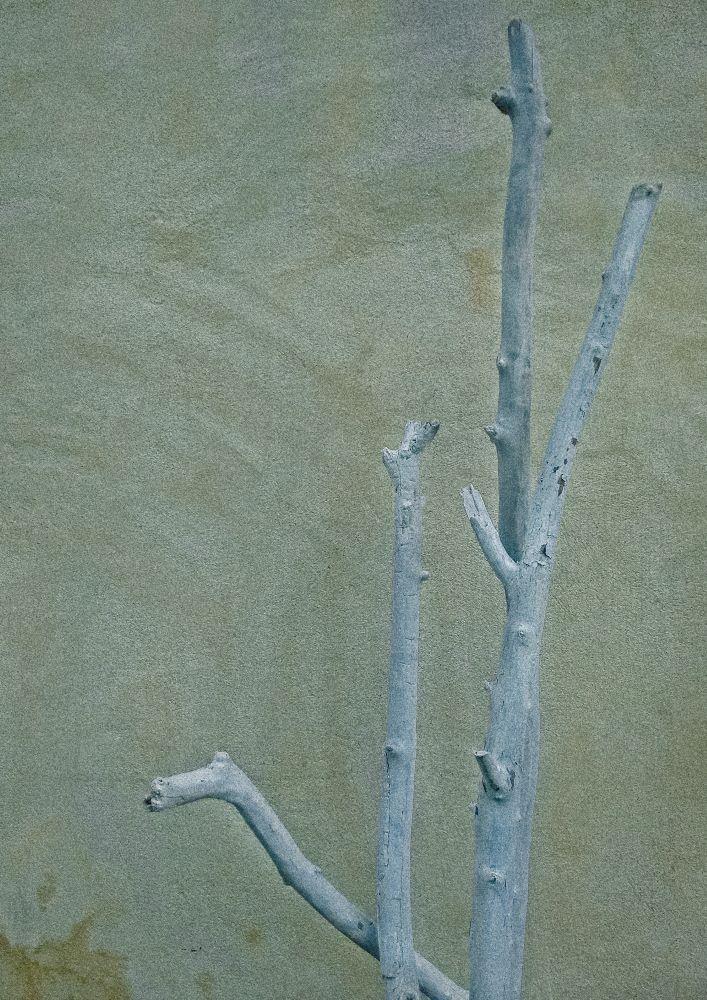 Tela em Canvas LXVII  - Abarca Móveis Ltda