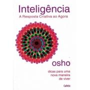 Inteligencia  A Resposta Criativa Ao Agora