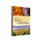 LIVRO DOS ESPÍRITOS (O) - ESPIRAL - EME