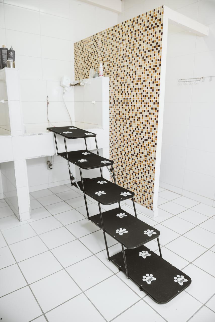 Escada Portátil Para Banho e Tosa