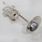 Trompete Michael Prateado Usado