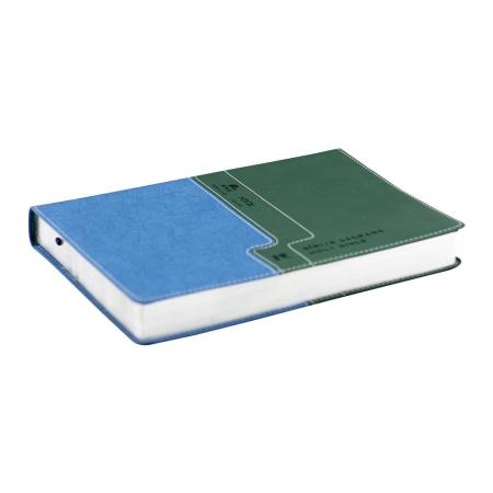 Bíblia Bilíngue Português e Inglês | Nvi | Luxo | Capa Pu | Verde e Azul