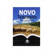 Biblia: Novo Testamento   ARA   Edição de Bolso   Capa Brochura Azul e Bege