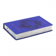 Bíblia Sagrada | AEC | Letra Grande | Capa Semiflexível | Azul