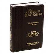 Bíblia Sagrada | Harpa Avivada e Corinhos | Arc | Letra Jumbo | Marrom