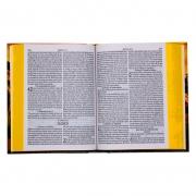 Bíblia Sagrada Leão Paisagem Com Harpa E Corinhos | ARC | Capa Dura | Ilustrada