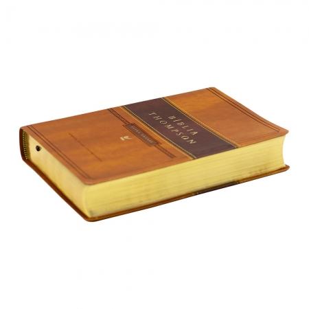 Bíblia Thompson | Aec | Letra Grande | Luxo | Marrom Claro e Escuro