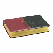 Bíblia Thompson | Aec | Luxo | Letra Grande | Capa Pu | Verde e Vinho