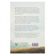 Livro: o Agir Invisível de Deu | Luciano Subirá