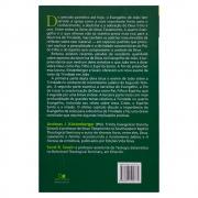 Livro: Pai, Filho e Espírito | Andreas J. Kostenberger & Scott R. Swain