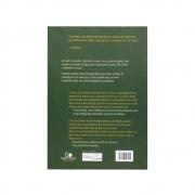 Livro: Plantando Igrejas Missionais   Ed Stetzer