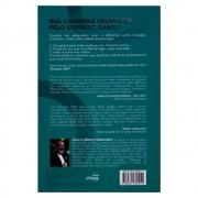 Livro: Vocação 360   Paulo Sérgio Fernandes