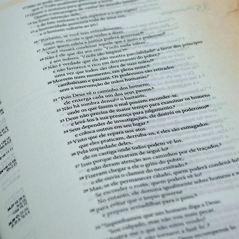 Bíblia De Estudo Arqueológica | NVI | Luxo | Capa PU | Vinho E Cinza