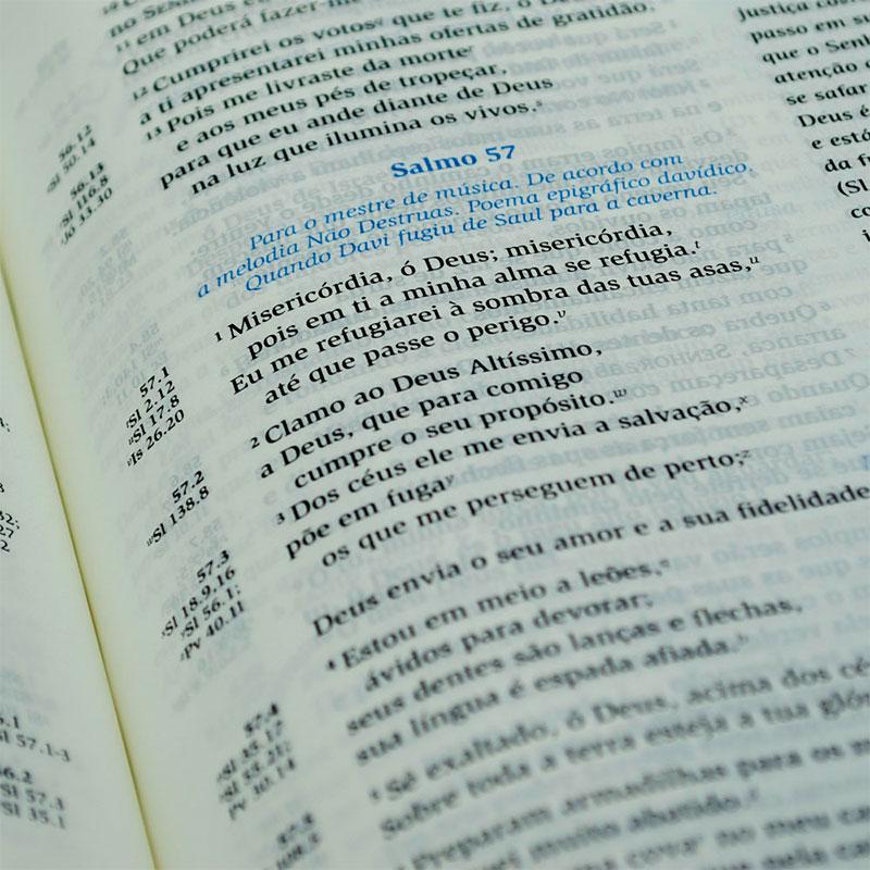 Bíblia De Estudo Da Mulher De Fé   NVI   Com Índice   Luxo   Capa Pu Violeta E Bege