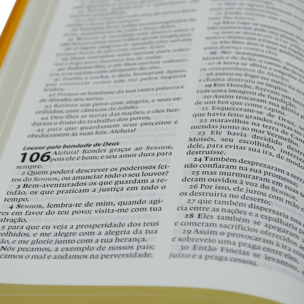 Bíblia De Estudo Esperança   Almeida Século 21   Capa Semiluxo   Laranja