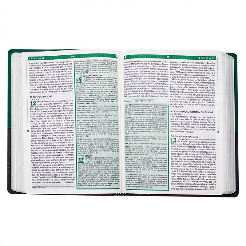Bíblia De Estudo Esquematizada | ARA | Semiluxo | Verde