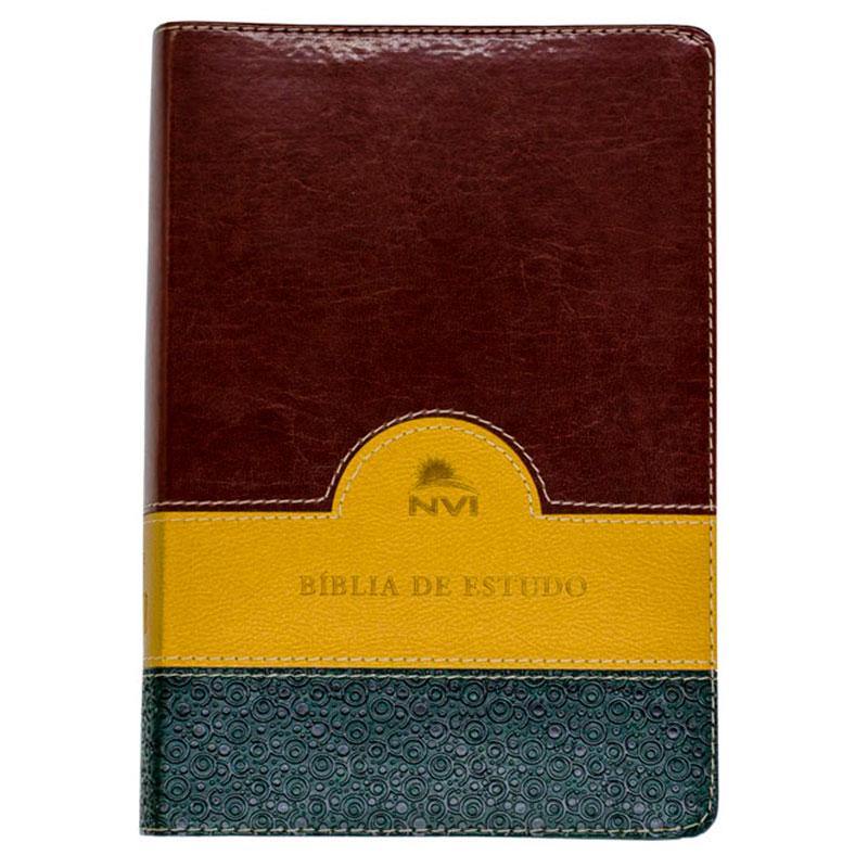 Bíblia de Estudo | Nvi | Luxo | Capa Pu Verde Bege e Vinho