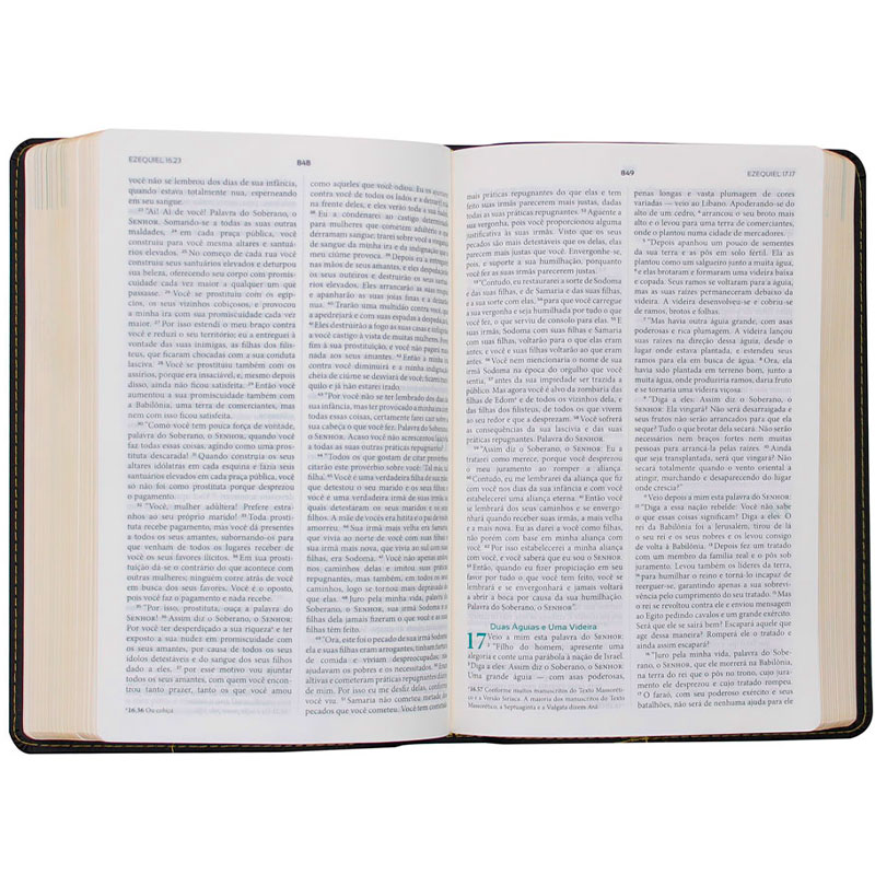 Bíblia Do Discípulo   NVI   Capa Luxo   Preta