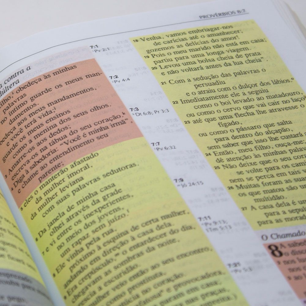 Bíblia Estudo Colorida | NVI | Capa Luxo | Letra Grande | Marrom