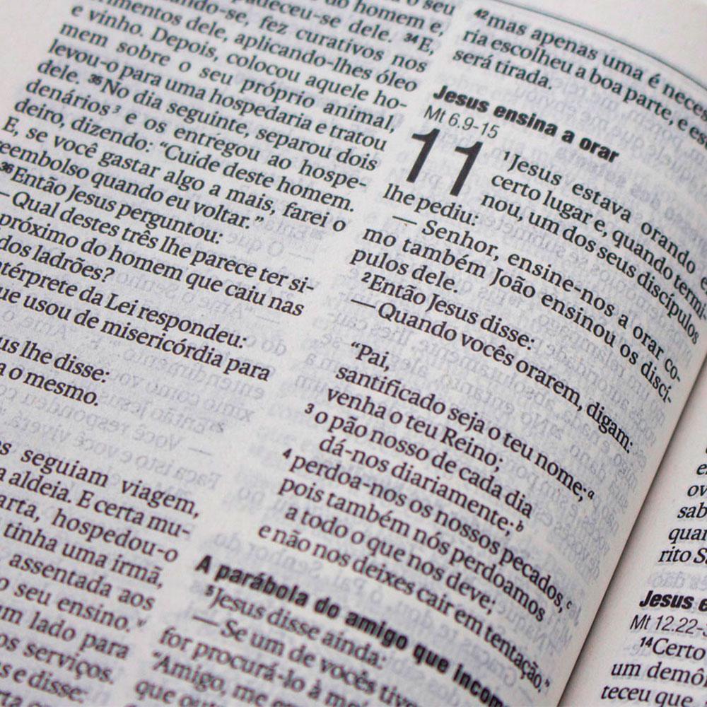 Bíblia Novo Testamento Pão Da Vida | NAA | Capa Brochura | Marrom