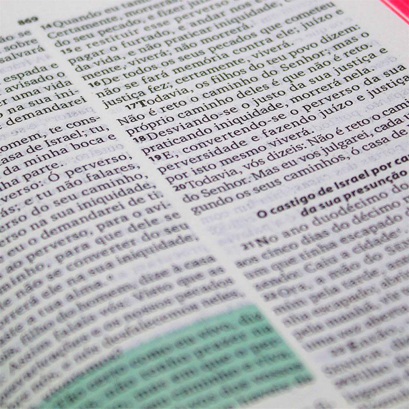 Bíblia Sagrada com Caderno Para Anotações | ARA | Capa Dura | Cinza e Vermelha