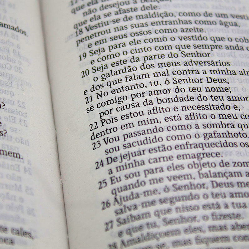 Bíblia Sagrada Folhagem   AEC   Letras Vermelhas   Capa Semiluxo