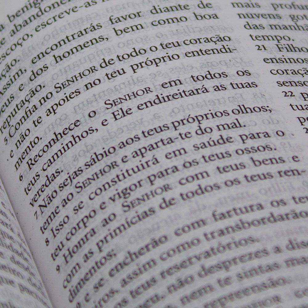 Bíblia Sagrada King James - Leão Color| KJA | Capa Dura | Letra Grande | Ilustrada