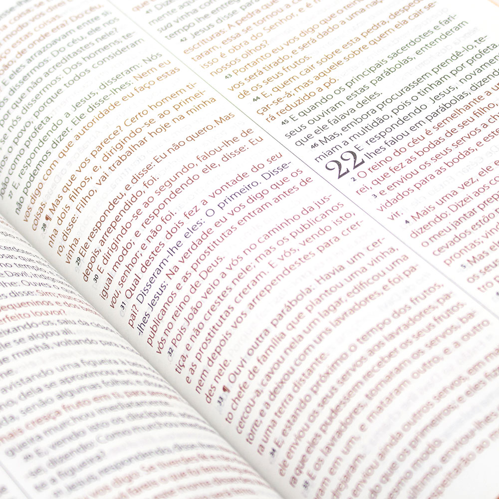 Bíblia Sagrada King James Leão   King James Fiel 1611   Capa Soft Touch   Marrom