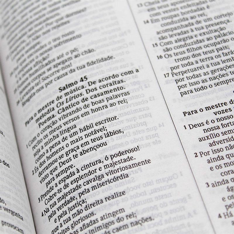 Bíblia Sagrada Leão De Judá | NVI | Capa Soft Touch