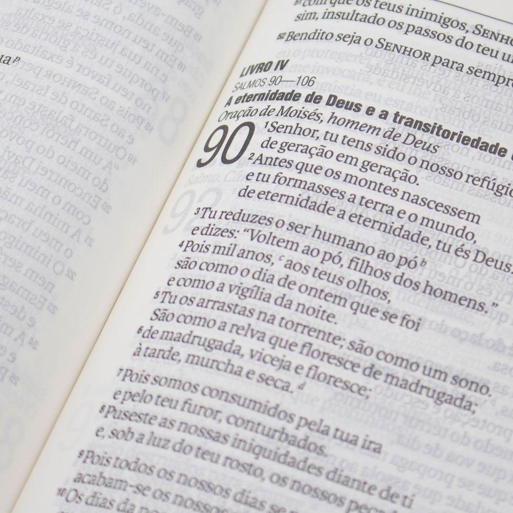 Bíblia Sagrada   NAA   Couro Sintético   Marrom