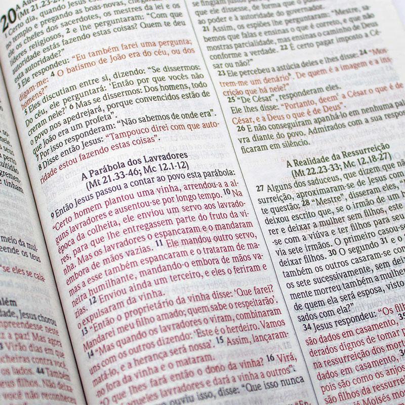 Bíblia Sagrada Nova Ortografia - Alado | NVI | Capa Dura | Preta / Ilustrada