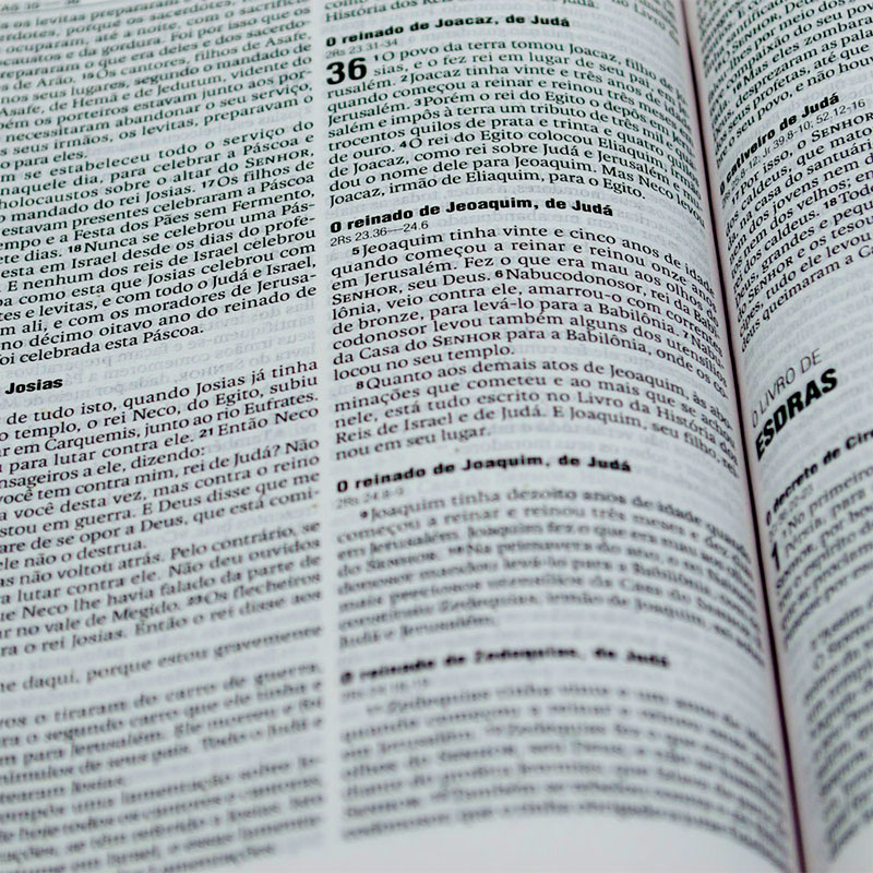 Bíblia Sagrada Para Evangelismo E Doações | NAA | Capa Brochura | Verde