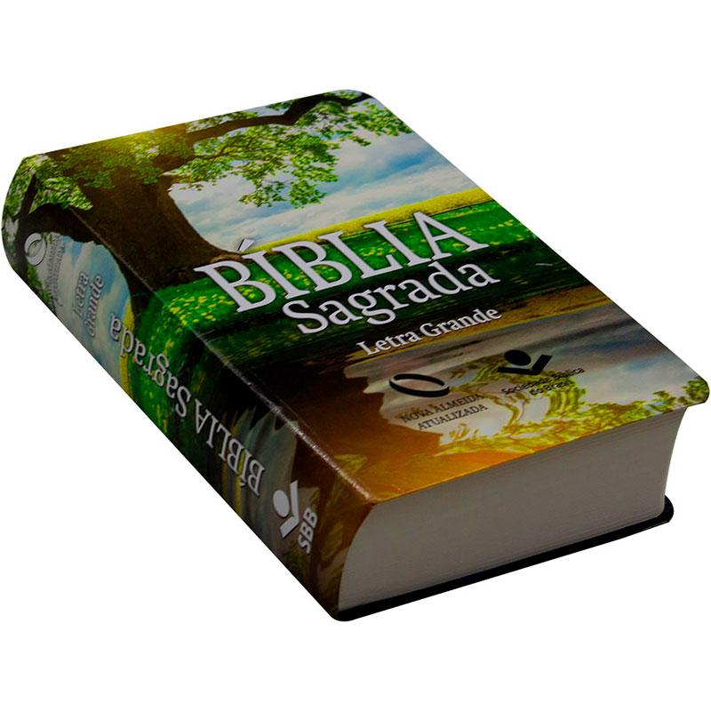 Bíblia Sagrada Reflexo | NAA | Capa Semiflexível | Letra Grande | Verde Água