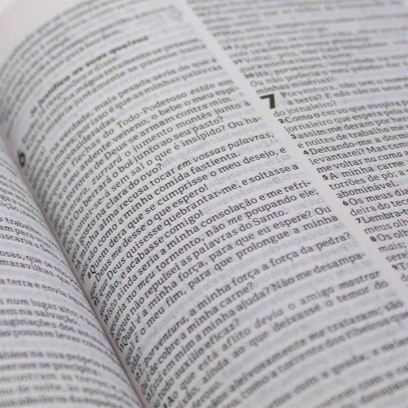 Bíblia Sagrada Semente | ARC | Capa Brochura | Pequena | Verde