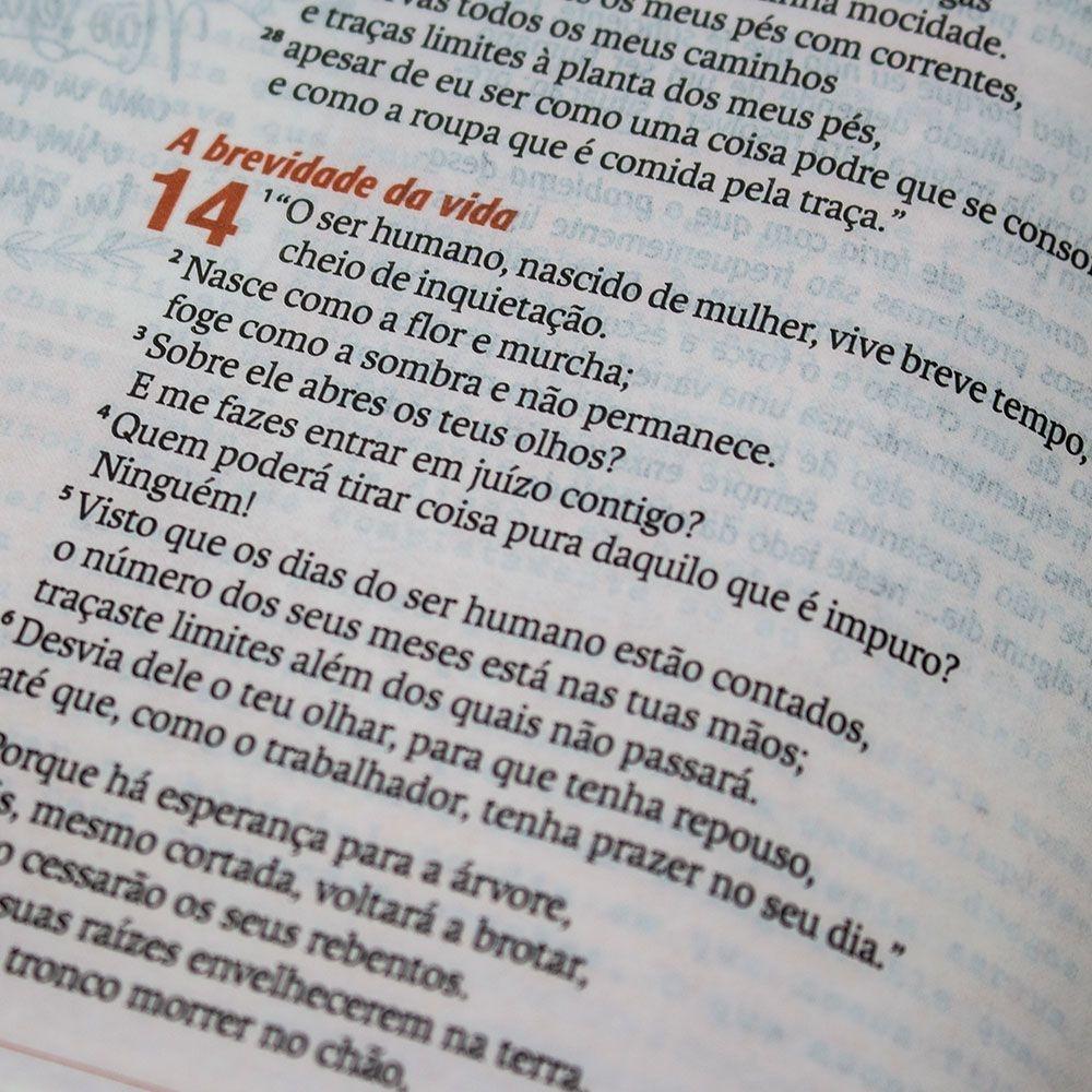 Bíblia Sagrada Verdadeira Identidade | NAA | Capa Pu | Colorida