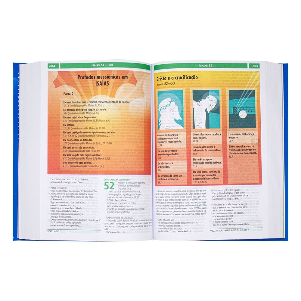 Bíblia Visual Com Infográficos | NTLH | Capa Semiflexível | Azul