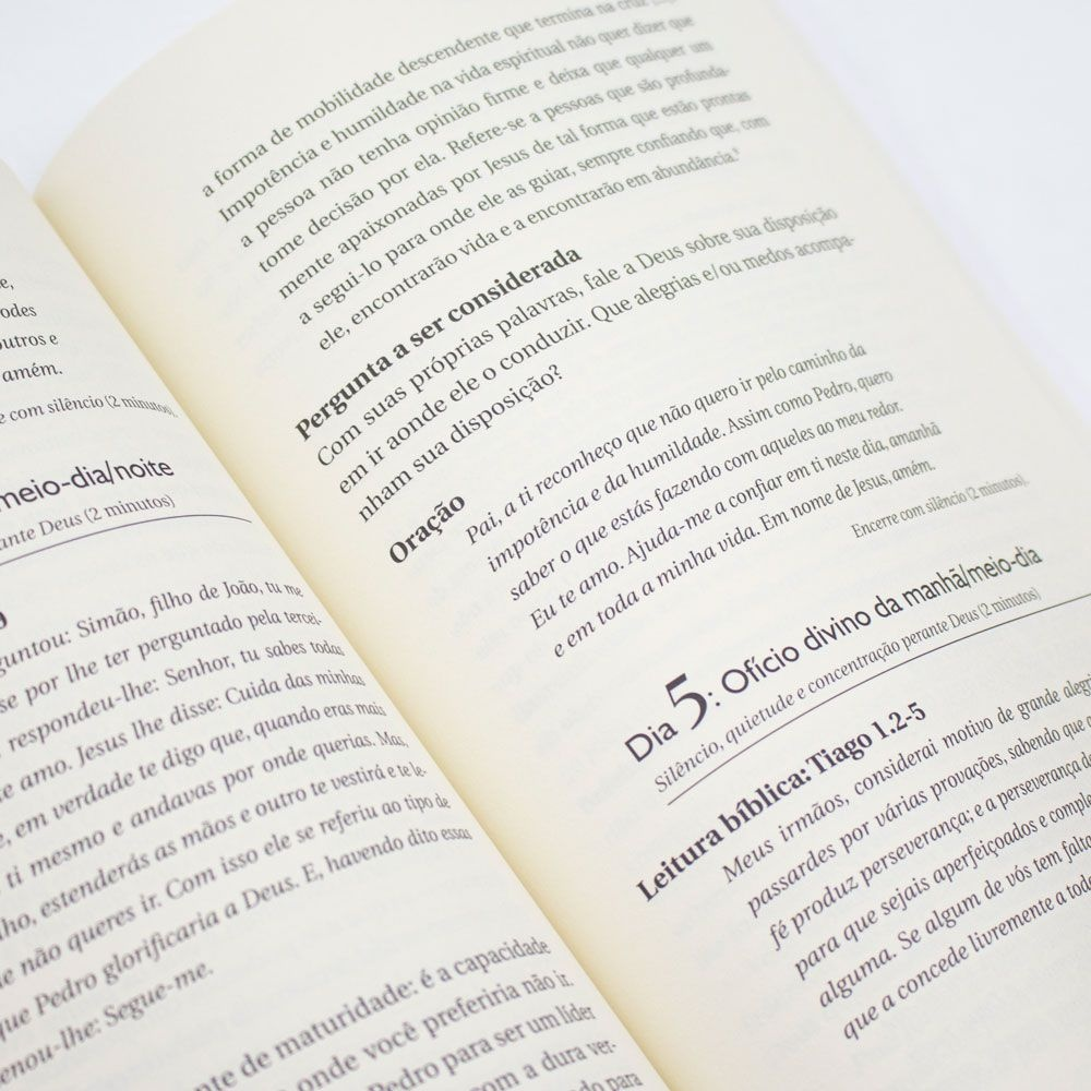 Devocional: Espiritualidade Emocionalmente Saudável Dia A Dia   Peter Scazzero