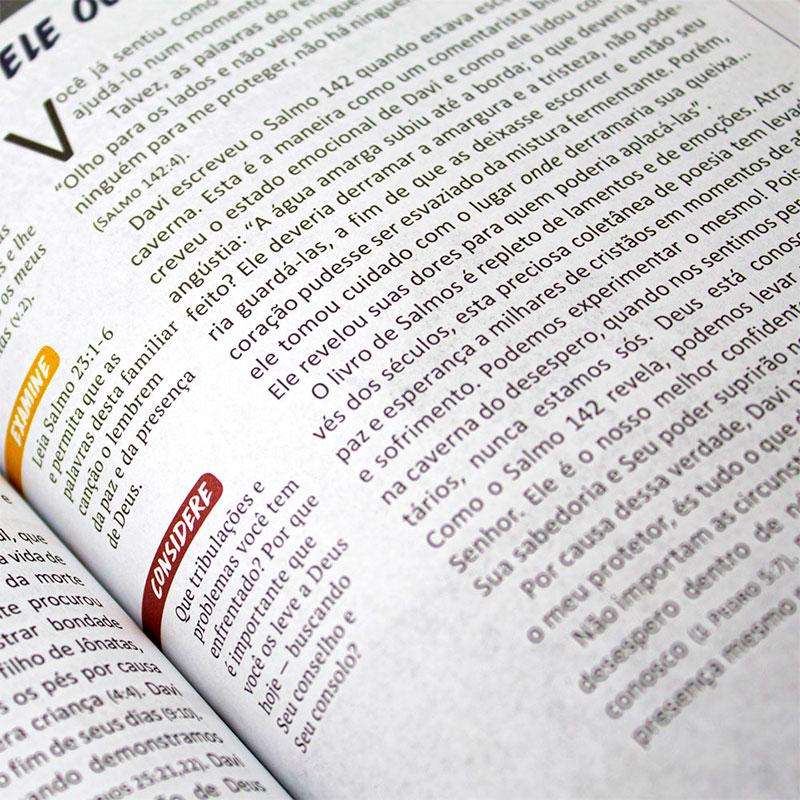 Devocional: Pão Diário Vol. 21   Jornada Com Deus