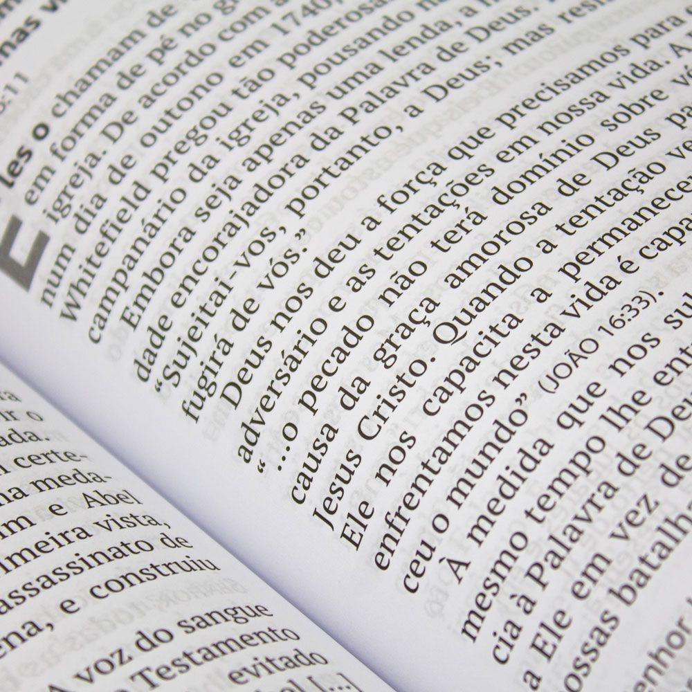 Devocional: Pão Diário Volume 22   Capa Família   Letra Gigante