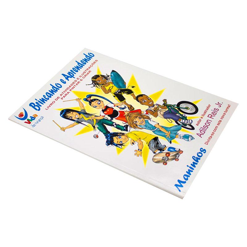 Livro: Brincando E Aprendendo | Adilson Reis Jr.