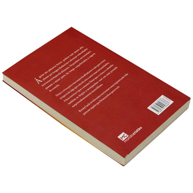 Livro: Decole | Kenny Luck