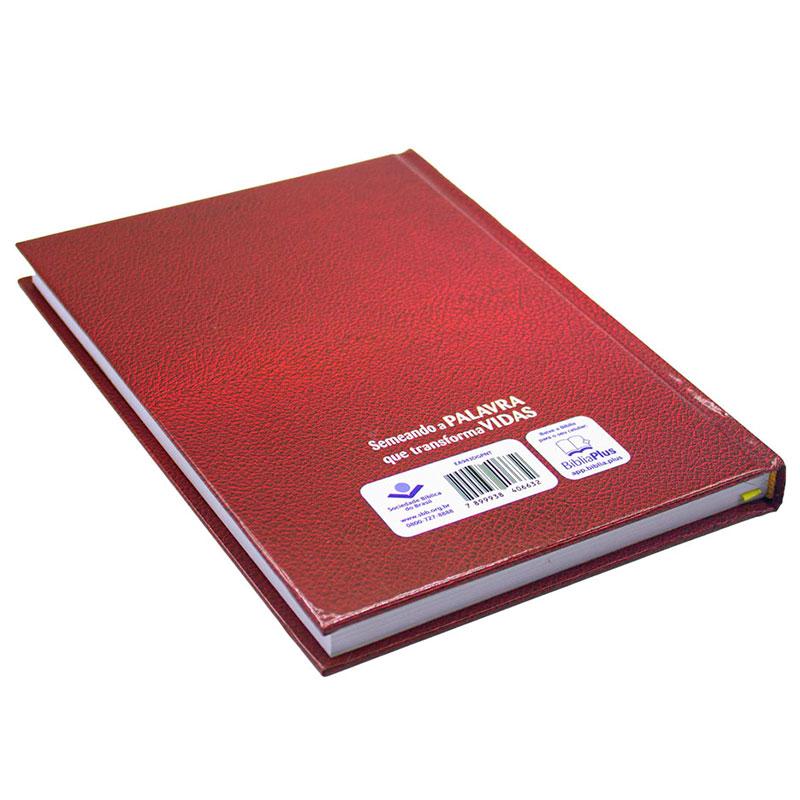 Livro: Dicionário Grego-Português Do Novo Testamento   SBB