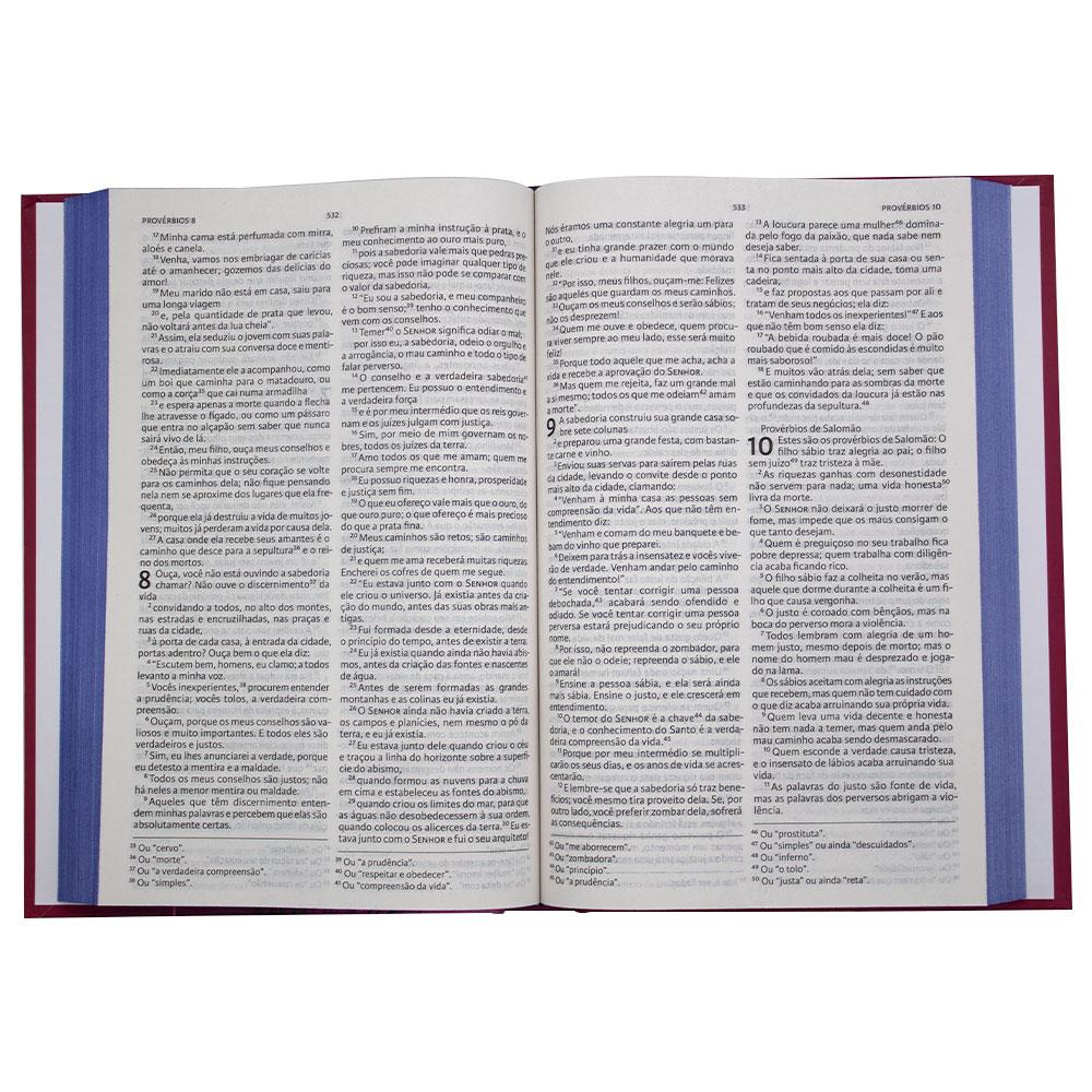 Nova Bíblia Viva Liberdade | Nova Bíblia Viva | Letra Grande | Capa Dura | Rosa