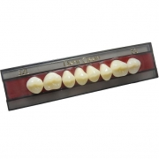 Dent Clean Posterior Superior Imodonto